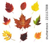 autumn leaves set  vector... | Shutterstock .eps vector #221117008