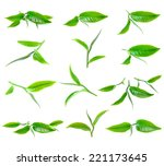 green tea leaf isolated on... | Shutterstock . vector #221173645