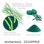 superfood spirulina. blue green ... | Shutterstock .eps vector #221249965