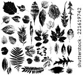 leaf collection   vector... | Shutterstock .eps vector #221619742