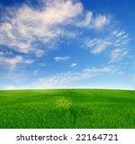 summer field landscape   Shutterstock . vector #22164721