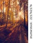 beautiful autumn background ... | Shutterstock . vector #221762176