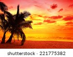coconut palm trees silhouette... | Shutterstock . vector #221775382
