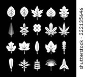 set icons of leaf isolated on...   Shutterstock . vector #222135646