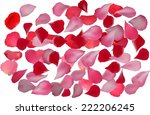 Stock vector illustration with rose petals isolated on white background 222206245