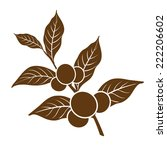 coffee beans   Shutterstock .eps vector #222206602