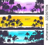 vector palm trees illustration... | Shutterstock .eps vector #222307036