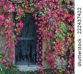 Old Wooden Door Overgrown With...