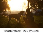Stock photo happy dog and young girl sitting on the grass in the park at sunset 222493828