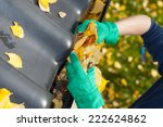 Leaves In A Rain Gutter During...