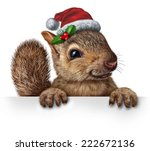 Holiday Squirrel Wearing A...