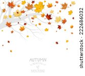 falling leaves and branch... | Shutterstock .eps vector #222686032