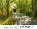 colville covered bridge 5 | Shutterstock . vector #222700516