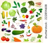 collection of isolated ripe... | Shutterstock .eps vector #222854608