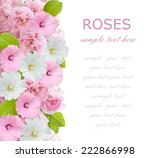 white and pink flowers... | Shutterstock . vector #222866998