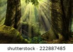 Forest Landscape With Sunbeams  ...