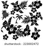 illustration of hibiscus | Shutterstock .eps vector #223002472