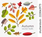 vector autumn template. modern... | Shutterstock .eps vector #223063975