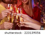 group of friends toasting with... | Shutterstock . vector #223139056