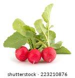 fresh garden radish isolated on ...   Shutterstock . vector #223210876