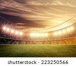 stadium | Shutterstock . vector #223250566