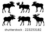 Moose Silhouttes On The White...