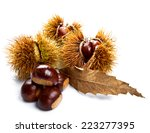 Groups Of Chestnut Nuts On...