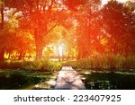 picturesque forest and the river | Shutterstock . vector #223407925