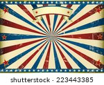 horizontal textured american... | Shutterstock .eps vector #223443385