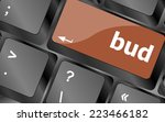 button with bud word on... | Shutterstock . vector #223466182