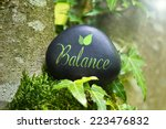 the word balance on a stone in... | Shutterstock . vector #223476832
