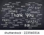 thank you word cloud  | Shutterstock . vector #223560316