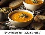 homemade autumn butternut... | Shutterstock . vector #223587868