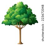 illustration of a close up tree   Shutterstock .eps vector #223672048