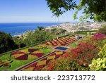 botanical garden of funchal... | Shutterstock . vector #223713772