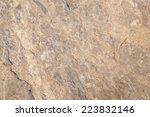Stone  Detailed Stone Texture