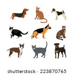Cats And Dogs Vector...