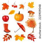 Set Of Autumn Themed Objects....