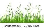 financial growth fresh grass... | Shutterstock .eps vector #224097526