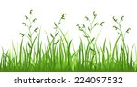 financial growth of fresh grass ... | Shutterstock .eps vector #224097532