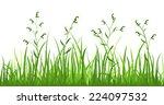 financial growth of fresh grass ... | Shutterstock .eps vector #224097532