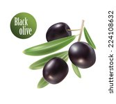 Black Olives With Leaves. Photo ...