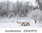 Single Picnic Bench In Snow...
