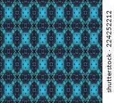 beautiful blue ornamental... | Shutterstock . vector #224252212