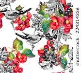 watercolor wild exotic birds on ...   Shutterstock .eps vector #224314336