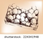 box with apples  hand drawing. | Shutterstock .eps vector #224341948