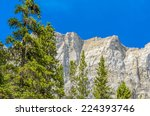 fragment of grassi lakes trail... | Shutterstock . vector #224393746