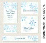 winter invitation background... | Shutterstock .eps vector #224439976