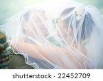 newlywed couple | Shutterstock . vector #22452709