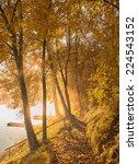 autumn scene | Shutterstock . vector #224543152